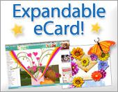 Expandable ecards